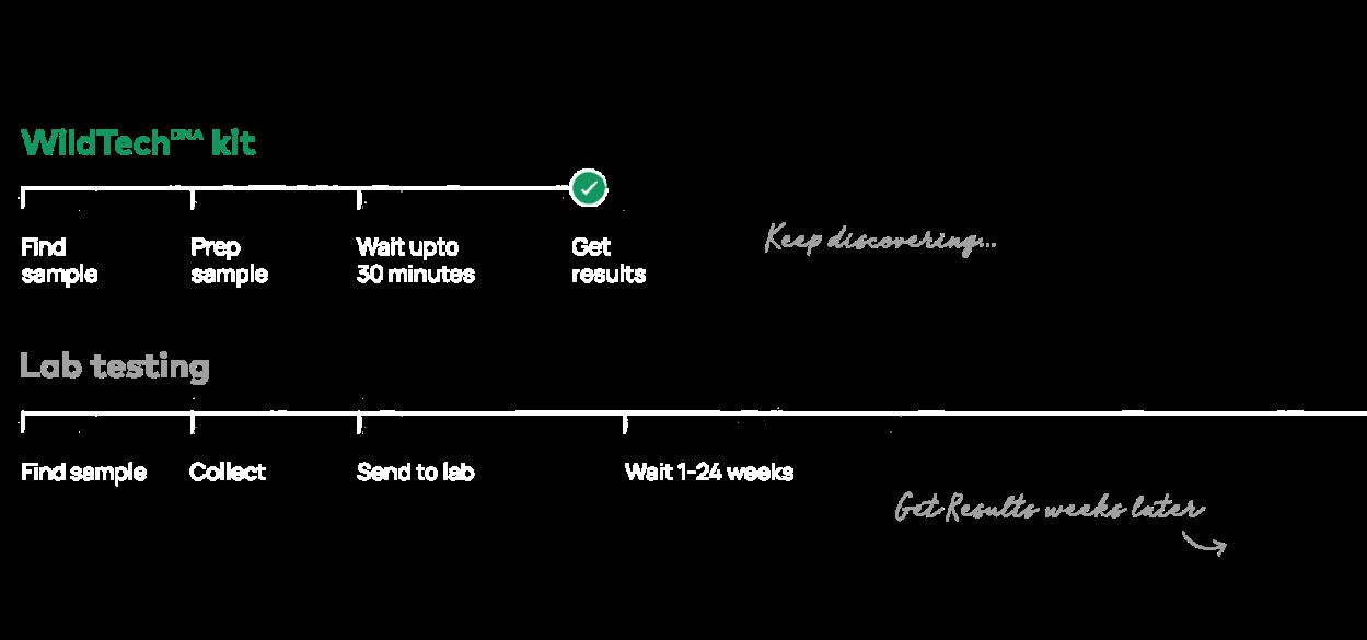 DNA species detection timeline